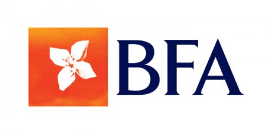 BFA  Lança Projecto Solidário - Platina Line